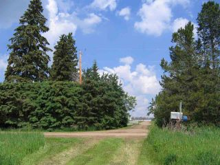 Photo 15: 231076 TWP 480: Rural Wetaskiwin County House for sale : MLS®# E4240854
