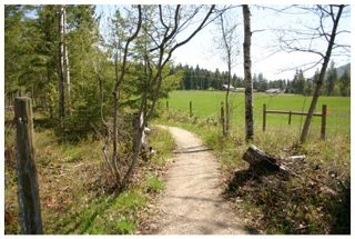Photo 49: 2240 Southeast 15 Avenue in Salmon Arm: HILLCREST HEIGHTS House for sale (SE Salmon Arm)  : MLS®# 10158069