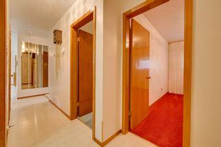 Photo 21: 8924 135 Avenue in Edmonton: Zone 02 House for sale : MLS®# E4257137