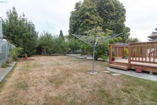 Photo 19: 260 Regina Ave in VICTORIA: SW Tillicum House for sale (Saanich West)  : MLS®# 824726