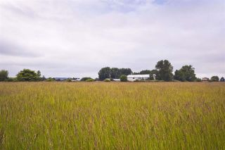 Photo 6: 2990 57B STREET in Delta: Agriculture for sale : MLS®# C8023503