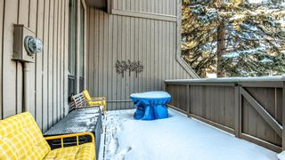 Photo 44: 22 10457 19 Street SW in Calgary: Braeside Row/Townhouse for sale : MLS®# A1074324