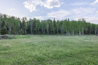 Photo 27: 231175 Bracken Road in Rural Rocky View County: Rural Rocky View MD Land for sale : MLS®# A1116621