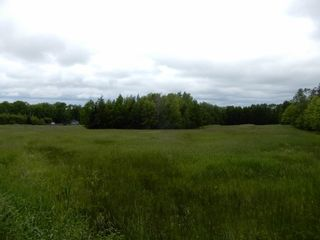 Photo 4: River John Road in Scotch Hill: 108-Rural Pictou County Vacant Land for sale (Northern Region)  : MLS®# 202115411