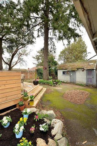 Photo 18: 412 Lampson St in VICTORIA: Es Saxe Point House for sale (Esquimalt)  : MLS®# 782016