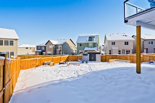 Photo 31: 133 Nolanhurst Place NW in Calgary: Nolan Hill Detached for sale : MLS®# A1067487