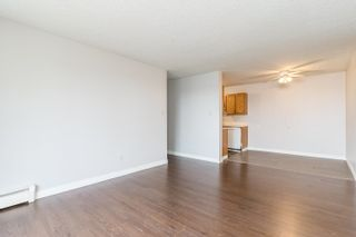 Photo 19:  in Edmonton: Zone 29 Condo for sale : MLS®# E4261180