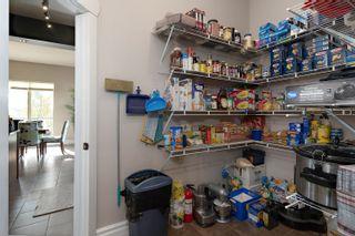 Photo 45: 53 Hillsborough Drive: Rural Sturgeon County House for sale : MLS®# E4264367