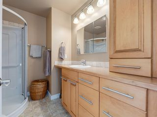 Photo 23: 226 SILVER MEAD Crescent NW in Calgary: Silver Springs Detached for sale : MLS®# A1025505