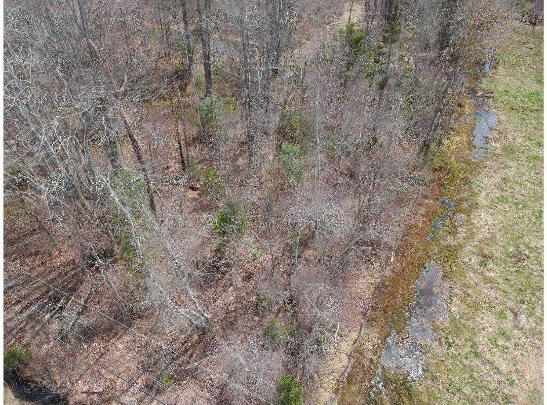 Main Photo: Lot Brooklyn Street in Brooklyn Corner: 404-Kings County Vacant Land for sale (Annapolis Valley)  : MLS®# 202110618
