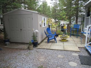 Photo 23: 19 Timber Ridge: Sundre Detached for sale : MLS®# A1147450