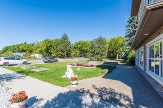 Photo 4: 8739 118 Street in Edmonton: Zone 15 House for sale : MLS®# E4262161