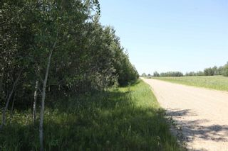 Photo 6: TWP 494 RR 42: Rural Leduc County Rural Land/Vacant Lot for sale : MLS®# E4252228