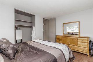 Photo 11: 260 Van Horne Crescent NE in Calgary: Vista Heights Detached for sale : MLS®# A1144476