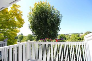 """Photo 7: 76 20540 66 Avenue in Langley: Willoughby Heights Townhouse for sale in """"Amberleigh"""" : MLS®# R2390320"""