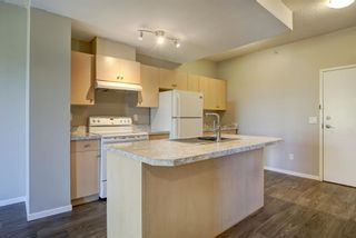 Photo 6: 4104 73 Erin Woods Court SE in Calgary: Erin Woods Apartment for sale : MLS®# A1042999