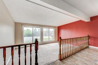 Photo 6: 315 Ranchlands Court NW in Calgary: Ranchlands Detached for sale : MLS®# A1131997