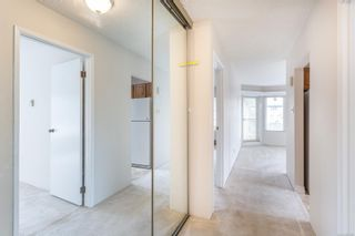 Photo 10: 306 1149 Rockland Ave in : Vi Downtown Condo for sale (Victoria)  : MLS®# 867486