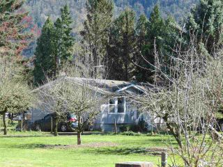 Photo 5: 1160 MARION Road in Abbotsford: Sumas Prairie Agri-Business for sale : MLS®# C8038422