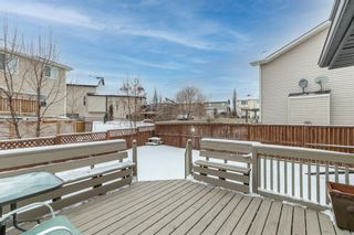 Photo 43: 218 Citadel Estates Heights NW in Calgary: Citadel Detached for sale : MLS®# A1073661
