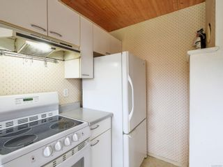 Photo 13: 2024 Newton St in : OB Henderson House for sale (Oak Bay)  : MLS®# 870494