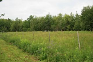 Photo 25: 8089 HIGHWAY 10 in Nictaux South: 400-Annapolis County Farm for sale (Annapolis Valley)  : MLS®# 202001425