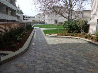 """Photo 4: 208 15313 19 Avenue in Surrey: King George Corridor Condo for sale in """"Village Terrece"""" (South Surrey White Rock)  : MLS®# R2258565"""