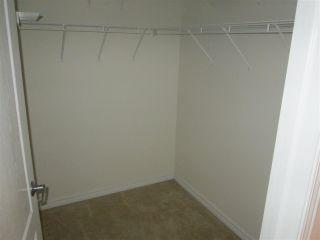 Photo 10: 460 2750 55 Street in Edmonton: Zone 29 Condo for sale : MLS®# E4223780