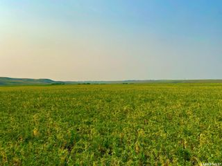 Photo 31: Unvoas Farm in Swift Current: Farm for sale (Swift Current Rm No. 137)  : MLS®# SK864766