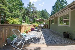 Photo 5: 1549 DEPOT Road in Squamish: Brackendale House for sale : MLS®# R2605847