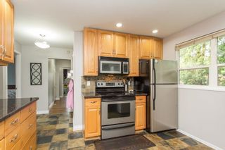 Photo 11: 22088 SELKIRK Avenue in Maple Ridge: West Central House for sale : MLS®# R2573871