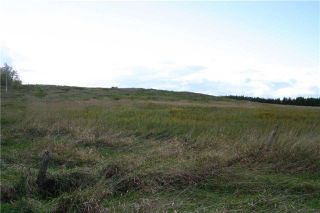 Photo 7: Lot 19 Con 2 in Amaranth: Rural Amaranth Property for sale : MLS®# X4235429