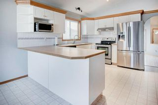 Photo 8: 66 Jensen Heights Place NE: Airdrie Detached for sale : MLS®# A1065376