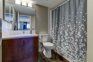 Photo 25: 303 108 COUNTRY VILLAGE Circle NE in Calgary: Country Hills Village Apartment for sale : MLS®# A1063002