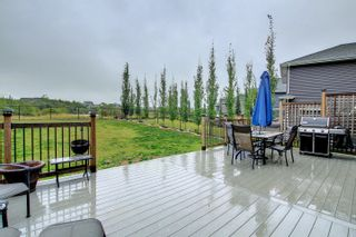 Photo 21: 2111 BLUE JAY Point in Edmonton: Zone 59 House for sale : MLS®# E4261289