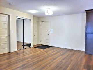 Photo 16: 438 6076 SCHONSEE Way in Edmonton: Zone 28 Condo for sale : MLS®# E4260047