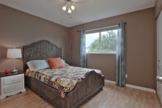 Photo 12: 7631 185 ST NW in Edmonton: Zone 20 House for sale : MLS®# E4176838