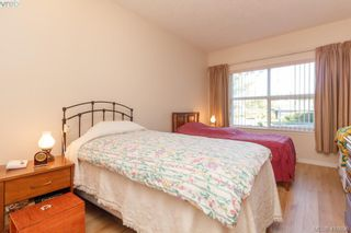 Photo 8: 116 1485 Garnet Rd in VICTORIA: SE Cedar Hill Condo for sale (Saanich East)  : MLS®# 826615
