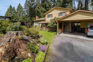 Photo 18: 3689 KENNEDY Street in Port Coquitlam: Glenwood PQ House for sale : MLS®# R2260406