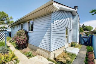 Photo 41: 48 DOVERTHORN Place SE in Calgary: Dover Detached for sale : MLS®# A1023255