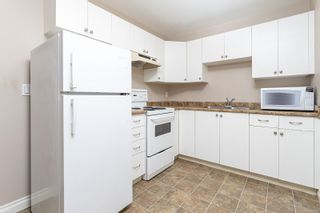 Photo 31: 4020 Rainbow St in Saanich: SE High Quadra House for sale (Saanich East)  : MLS®# 882323