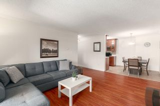 Photo 3: 317 1210 PACIFIC Street in Coquitlam: North Coquitlam Condo for sale : MLS®# R2618063