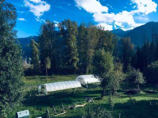 Photo 8: 2162 HIGHWAY 99 in Pemberton: Mount Currie House for sale : MLS®# R2543035