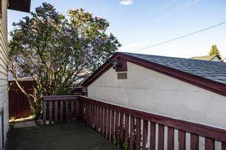 Photo 5: 227 FALMERE Way NE in Calgary: Falconridge Detached for sale : MLS®# C4299797