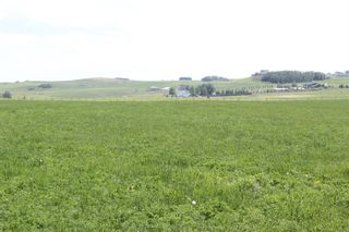 Photo 4: ON Range Road 12 in Rural Rocky View County: Rural Rocky View MD Commercial Land for sale : MLS®# A1116953