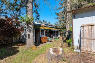 Photo 35: 4639 Macintyre Ave in : CV Courtenay East House for sale (Comox Valley)  : MLS®# 876078