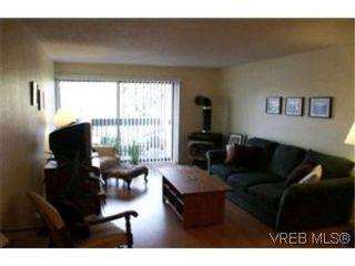 Photo 2:  in VICTORIA: Vi Fairfield East Condo for sale (Victoria)  : MLS®# 386948