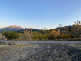 Photo 11: 8330 18 Avenue in Coleman: NONE Land for sale : MLS®# A1084355