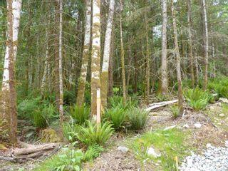 Photo 10: 461 Fir Crest Way in : Isl Quadra Island Land for sale (Islands)  : MLS®# 867147