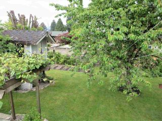 Photo 12: 1761 LANGAN Avenue in Port Coquitlam: Central Pt Coquitlam House for sale : MLS®# R2269766
